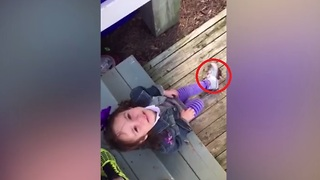 Little girl's crying tantrum is completely justifiable - Video