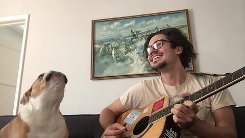Bulldog sings along while his owner plays guitar