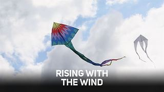 Go with the wind this summer: Kite making tips - Video