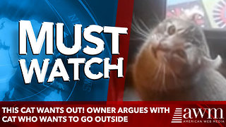 This cat wants out! Owner argues with cat who wants to go outside - Video