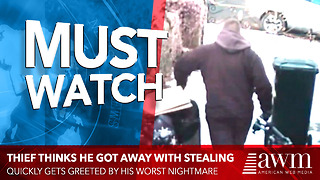 Thief Thinks He Got Away With Stealing, Quickly Gets Greeted By His Worst Nightmare - Video
