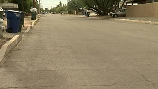 Terrier mix killed by loose Pit Bull in Palo Verde neighborhood - Video