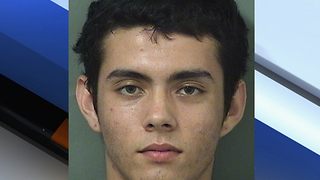 Police: Football gambling debt sparked Palm Beach Gardens shooting - Video
