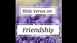 BIBLE VERSES FOR FRIENDSHIP