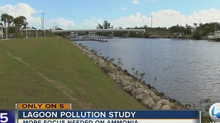 Lagoon pollution study on the Treasure Coast - Video