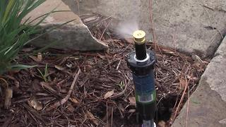Fixing a sprinkler | House Calls with James Tully - Video