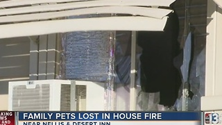 5 dogs dead after mobile home fire - Video