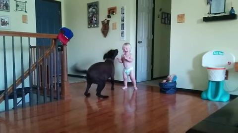 Toddler and dog share special bond since birth