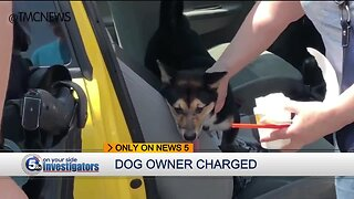 Dog found in locked car, North Ridgeville woman charged with cruelty to animals