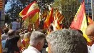 Crowd Gathers in Barcelona For Spanish Unity Rally - Video