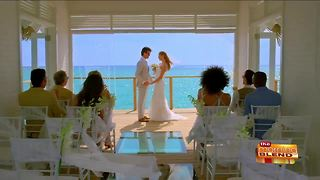 Planning Your Dream Honeymoon - Video