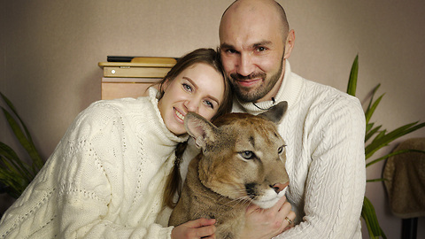 Russian Couple Share Their Studio With An Oversized Cat
