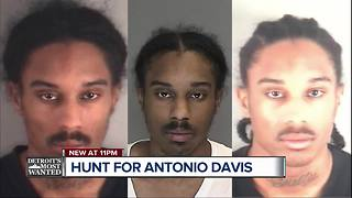 Detroit's Most Wanted: Antonio Davis - Video