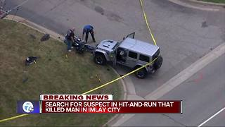 Imlay PD: Man ditches car with loaded weapons after fatal hit-and-run