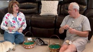 These Grandparents Were Comically Oblivious To Pregnancy Reveal - Video