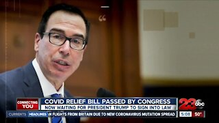 COVID Relief bill passed by congress