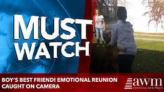Boy's best friend! Emotional reunion caught on camera - Video