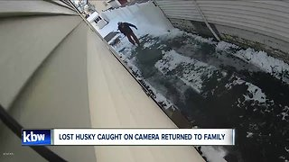 Stolen dog returns to family after theft was caught on camera