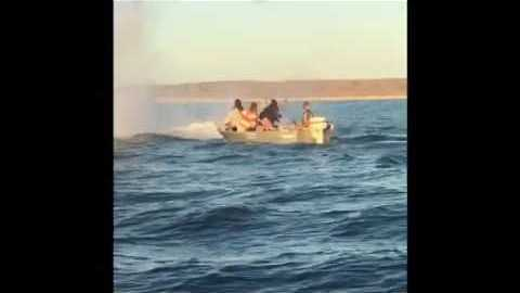 Humpback Whale Takes a Leap, Narrowly Missing Small Boat