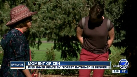 Going inside the new trend of 'forest bathing' in Colorado