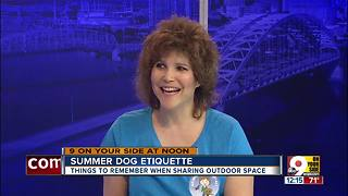 Summer dog etiquette - Video