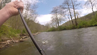 Historic flooding trout fishing