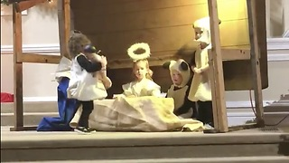 Little Actress Liberates Baby Jesus During Christmas Play - Video