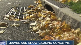 Leaves and snow are a bad combination - Video
