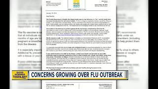 Hillsborough County Schools sends home letter warning about flu outbreak - Video