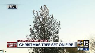Community coming together to replace Christmas tree set on fire - Video