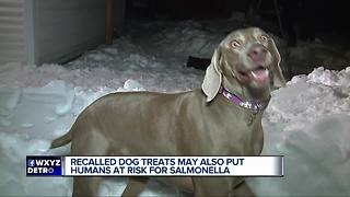 Recalled dog food and treats could give humans salmonella - Video