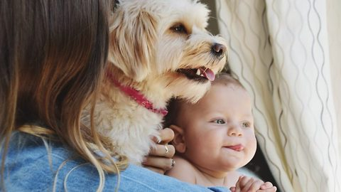 Unconfident mum's stunning pics of adorable bond between son and rescue dog who watched birth go viral