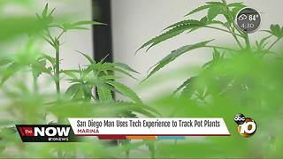 San Diego man uses tech experience to track pot plants - Video
