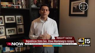 Arizona state Senator Steve Montenegro resigns to run for Congress - Video