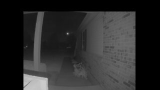 Meteor Captured on Michigan Home Security Camera
