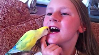 """A Lovebird Pulls A Young Girl's Loose Tooth Out Of Her Mouth"""