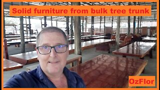 Solid furniture made from bulk massive tree trunks