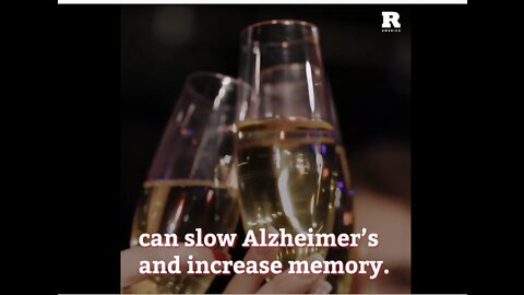 Drinking Champagne Every Day Is Good For Your Brain!