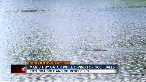 Man attacked by gator at Fla. golf course