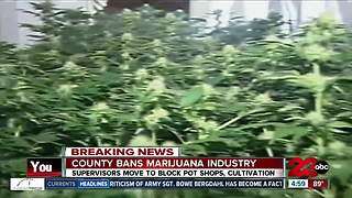 Kern County moves to ban marijuana cultivation, distribution - Video