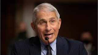 Fauci: 'Whole Lot Of Pain' From Pandemic Coming
