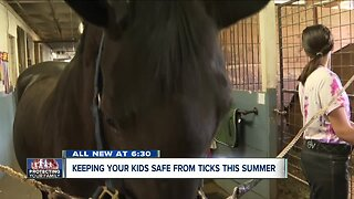 Tips on how to keep your kids safe from ticks this summer