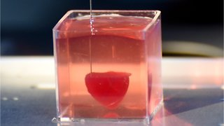 Israeli scientists have created the first 3D-printed heart with blood vessels