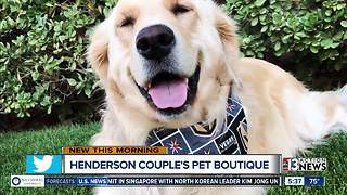 Henderson pet boutique selling Golden Knights pet apparel after dog diagnosed with cancer - Video