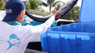 Fillet for Friends: Students donate surplus fish to help feed the less fortunate - Video