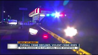 Violent Crimes Up, Nonviolent Crimes Down in Cape Coral - Video