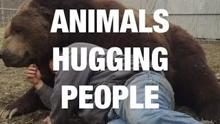 These Animals Love Sharing Hugs With Humans - Video
