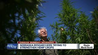 Omaha Sunday Morning: Controversial sign, National park passes, hemp takes hold - Video