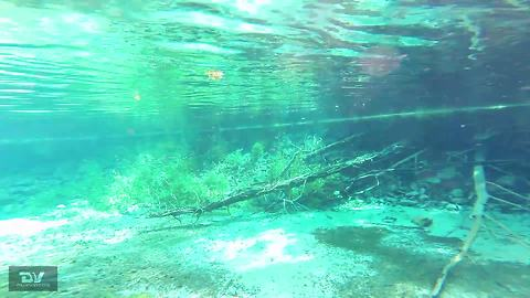 Breathtaking underwater springs reveal hidden geological wonder