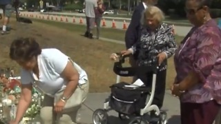 Senior citizens join student movement - Video